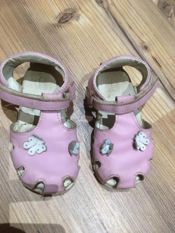 Roosad kingad 22