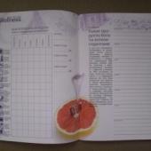 Wellness päevik vene keelne