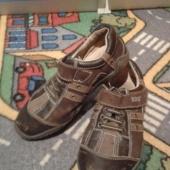 Pruunid kingad 31