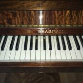 klaver Bellaruss