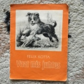 Felix Kotta - Vaat mis juhtus