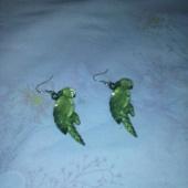 Papagoi kõrvarõngad
