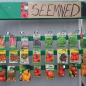 Erinevad seemned