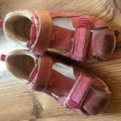 Roosad kingad 25