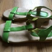 Rohelised kingad 39