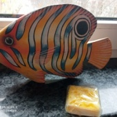 Dekoratiivkala ja käsitööseep
