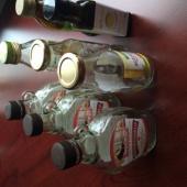 Väiksed pudelid