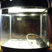 Akvaarium - loe