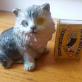 Kummist kass, kelle üks silm kaduma läinud