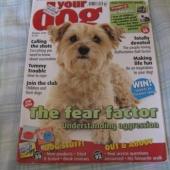 Koerte ajakiri. Inglise keelne.
