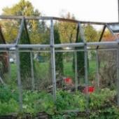 Vana kasvuhoone klaasid